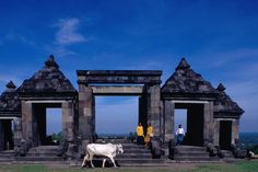 Candi (temple) Boko, Yogyakarta.  by Bill Wassman Lonely Planet Photographer