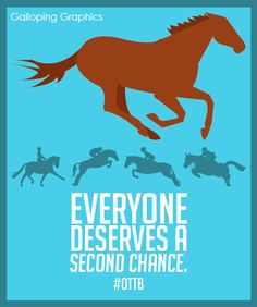 OTTB from Galloping Graphics