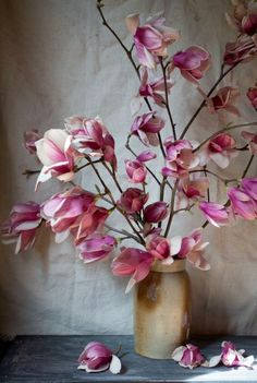 Magnolias / Wedding Style Inspiration / LANE (instagram: the_lane)