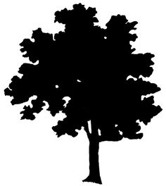 http://karenswhimsy.com/public-domain-images/tree-silhouettes/images/tree-silhouettes-4.jpg