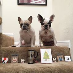 My wonderful friends at French Bulldog Love @shopfbl have donated a cute travel mug package of holiday cards and stickers. These items will be added to the raffle for the 3rd Annual Reindeer Romp Christmas French Bulldog Rescue Network @frenchbulldogrescue Fundraiser Event on December 6. Whoever wins this will have some adorable Frenchie swag!  by amymonkey72