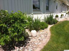 buxbom,betongkrukor,prydnadsgräs,murgröna,framsida,hus,fasad