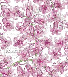 Tim Coffey Quilt Fabric- CorabellesTim Coffey Quilt Fabric- Corabelles,