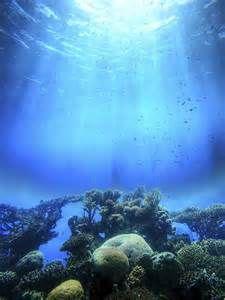 Swimming - Just Add Water Fan Art - Fanpop H2o Mermaids, Mermaids And Mermen, Magical Creatures, Sea Creatures, Rikki H2o, H2o Mermaid Tails, No Ordinary Girl, Mermaid Man, Mermaid Wallpapers