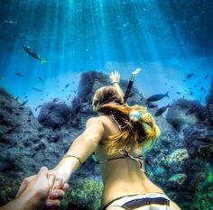 From surfing and skydiving to animal close-ups and stunning scenery, this gallery has some breathtaking images that we only get to see thanks to the GoPro. Gopro Photography, Underwater Photography, Underwater Photos, Underwater World, Gopro Underwater, Murad Osmann, Foto Pose, Snorkeling, Under The Sea