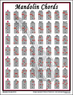 Easy Mandolin Chords Mandolin Chords notebook size laminated chart for mandolin players. Guitar Chord Chart, Guitar Tabs, Music Guitar, Guitar Chords, Box Guitar, Banjo, Tenor Ukulele, Mandolin Songs, Mandolin Lessons
