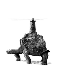 A Lighthouse Turtle. Limited Edition 297x21 cm by ParcoAndGrugnon