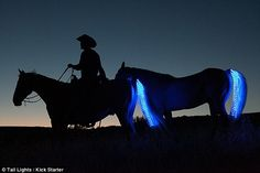 clip on LED light for horses to improve rider safety