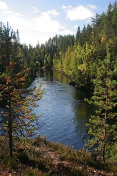 The Kitka River on the edge of Oulanka National Park, Kuusamo region. | Flickr - Photo Sharing!