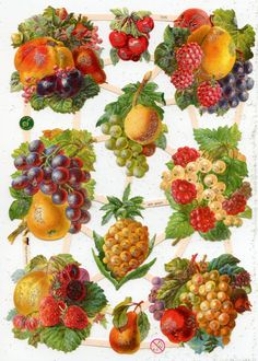 FRUIT Die Cut Reliefs by OneDayLongAgo on Etsy, $2.95