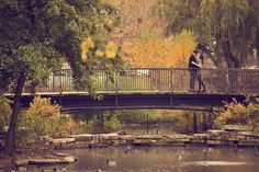 lincoln park fall engagement photos - Google Search