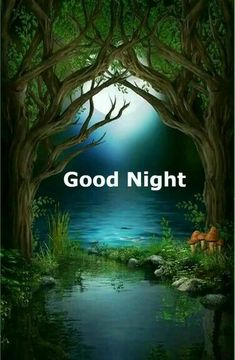 Good Night Image, Wallpapers, Collection, Beautiful, Wallpaper, Good Nite Images, Backgrounds