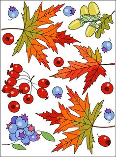 Nicole's Free Coloring Pages: September 2014 Fall Coloring Pages, Pattern Coloring Pages, Free Coloring, Adult Coloring, Coloring Books, Autumn Art, Autumn Theme, Autumn Activities, Art Activities