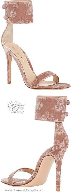 Brilliant Luxury ♦ Gianvito Rossi Empress Embroidered Velvet Sandals