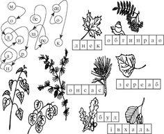 малюнки по клітинках комахи жуки метелики - Пошук Google