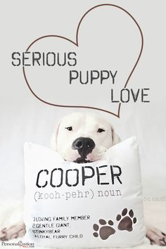 These fetching pillows will make everyone want to sit and stay. Choose your color and breed. Then, add in your pup's name, pronunciation, and their three defining characteristics. This is also a great gift for the dog lover in your life. Shop even more pet gifts at PersonalizationMall.com!
