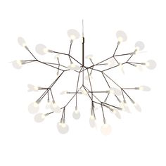 Moooi+Heracleum+II+Pendant+Light+-+Small++-+This+decorative+LED+lamp+from+Moooi+is+inspired+by+the+fantastical+Heracleum+Plant. Leaf+shaped+Polycarbonate+lenses+&+ultra-thin+suspension+wire+ramify+from+a+metal+wire+frame+branch+structure+creating+a+very+technical,+but+natural+shape. This+is+achieved+by+using+the+technique+of+coating+conductive+layers,+a+design+not+possible+with+normal+wires. The+Heracleum+leaves+are+not+frozen+in+one+position,+and+can+be+freely+re-positioned+by+rotating+t...