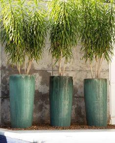Balcony Plants, Potted Plants, Backyard Retreat, Backyard Landscaping, Deck Yard Ideas, Garden Art, Home And Garden, Outdoor Topiary, Tall Floor Vases