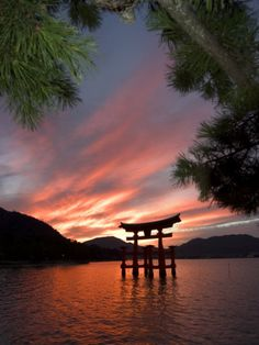Beautiful Torii shot!    Torii Shrine Gate in the Sea, Miyajima Island, Honshu, Japan Photographic Print