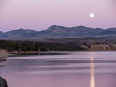 Purple Night Sky Moon Photography. Rustic Mountain by NJSimages