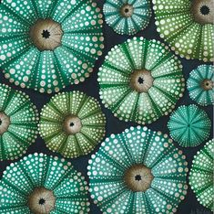 Kina are NZ's endemic sea urchin - widely distributed throughout the coastlines of both islands. Their very attractive shells are the subject of this print by South Auckland artist Jo Bridge. Maori Symbols, Nz Art, Maori Art, Kiwiana, Patterns In Nature, Abstract Watercolor, Abstract Art, Flower Art, Design Elements