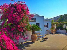 """ SANTORINI ✨ Hotel ✨ : Finikia's Place GREECE "" Santorini Hotels, Go See, Bougainvillea, Greek Islands, Holiday Destinations, Holiday Travel, Favorite Holiday, Terracotta, Pots"