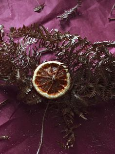 DIY : couronne de Noël naturelle en fougères séchées - C by Clemence Homemade Christmas, Grapefruit, Blog, Drink, Fern Bouquet, Crowns, Beverage, Drinking, Drinks