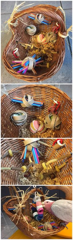 Parrot foraging toy made with a basket