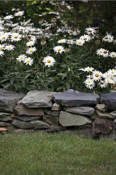brewster flower garden little compton rhode island gardenista