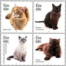 Postage Stamps - Ireland 2014 Cats (4) BLOCK UM