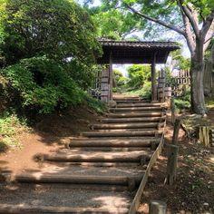 偕楽園 Kairaku-en Garden #偕楽園 #日本三名園 #水戸 #茨城 #kairakuen #kairakuengarden  #mito #ibaraki