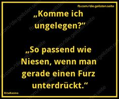 Jokes Quotes, Funny Quotes, Funny Memes, German Quotes, Susa, Man Humor, True Words, Laugh Out Loud, Cool Words