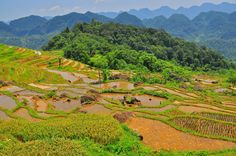 pu luong Travel Companies, Adventure Tours, Trekking, Vietnam, Golf Courses, River, Places, Outdoor, Outdoors