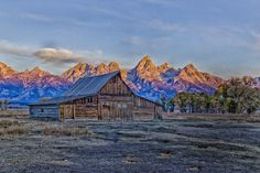 Frosty Morning on the Moulton Barn – Atlanta Canvas and Print Canvas Pictures, Print Pictures, Lifestyle Examples, Wonderful Places, Beautiful Landscapes, Atlanta, Jackson Wyoming, House Styles, Barns