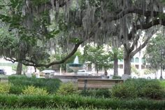 Orleans Square, the backyard to Savannah's Civic Center and Savannah College of Art and Design's Oglethorpe House, boasts the German Memorial Fountain. Located at Barnard and McDonough streets.