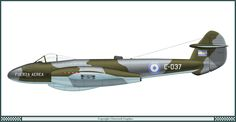 Gloster Meteor F.4 - Argentine Air Force 1964