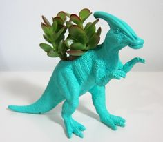 let's just say the boy likes all of these. Parasaurolophus planter and succulent.