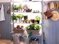 Indoor garden from Ikea Broder