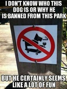 Skateboarding Scotty Dogs with drinking and smoking habits prohibited!