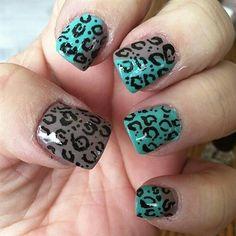 color combo leopard