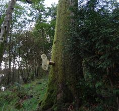 'the clockwork forest', a public installation located in grizedale, england.  the piece is comprised of a series of turnkeys affixed to various trees within the wooded area. as one is wound-up,   music begins to play, as if the user has brought to life an additional layer of sound organically existing in the natural environment.