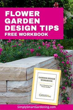 How to design a garden step-by-step