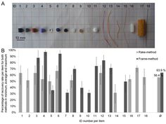 Monitoring methods for large micro- and meso-litter and applications at Baltic beaches