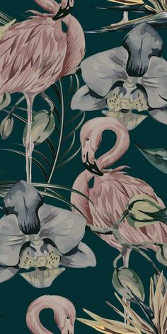 The Tropical Flamingo wallpaper features watercolour painted flamingos nestled amongst hibiscus flowers and tropical leaves. Wallpaper Flamingo, Tier Wallpaper, Tropical Wallpaper, Unique Wallpaper, Iphone Background Wallpaper, Tumblr Wallpaper, Animal Wallpaper, Flower Wallpaper, Wall Wallpaper