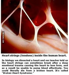 I know this, but it's amazing info! This actually causes more toxins to enter the heart causing pain, a person can actually have a broken heart.