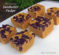 Sounds easy and delish :: Allergy-Friendly Microwave SunButter Fudge - EBL Food Allergies