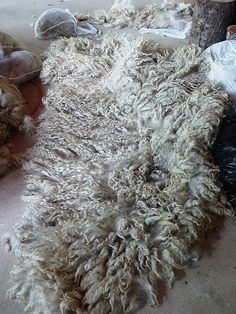 Raw lincoln longwool fleece by Modern Fiber Lab - Sonya Yong James, via Flickr