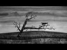 Same Suki - Siedem (Official music video) - YouTube