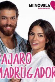 No 309 Subtitulado Mi Novela Subtitulada Series Completas En Español Novelas Pecado De Amor
