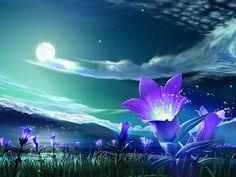 Noche azul...